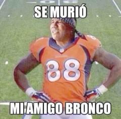 La canción Mi amigo Bronco y el cantante Lupe Esparza, fueron inspiración para crear memes que se burlan de la derrota de los Broncos de Denver .