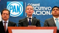 Anaya Cortés detalló los seis elementos que contiene la propuesta, entre ellos la formación de un consejo nacional y de un comité ciudadano, que trabajen por un México libre de corrupción, expresó.