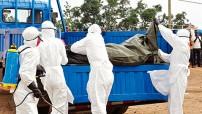 """El organismo afirmó que, ante esa situación, se están llevando a cabo """"esfuerzos exhaustivos"""" a fin de mejorar los equipos de protección contra el virus del Ébola, para el que no existe medicamento, ni vacuna."""
