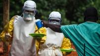 El próximo año será clave para bajar el número de casos a cero y para que el organismo de salud de Naciones Unidas pueda declarar al Africa Occidental zona libre de ébola, tal como ha ocurrido en Nigeria, Senegal y España.